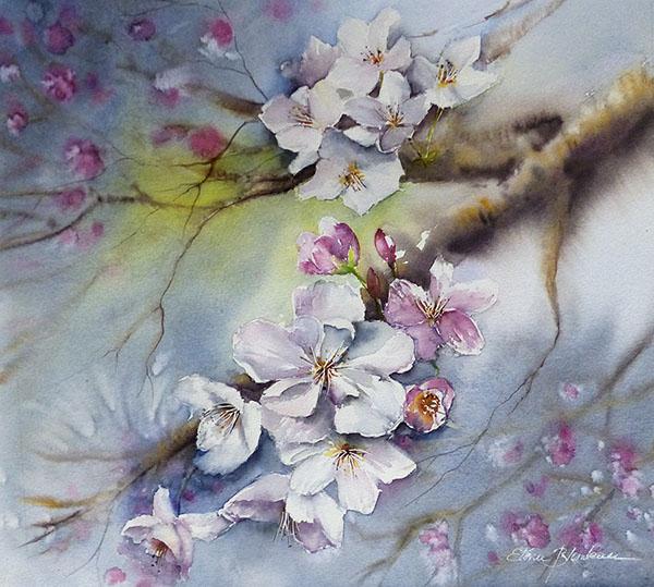 Fleurs de cerisier 50 x 50