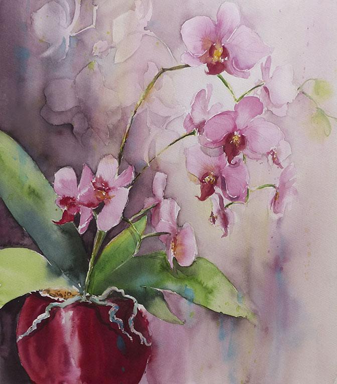 Orchidée 50 x 60
