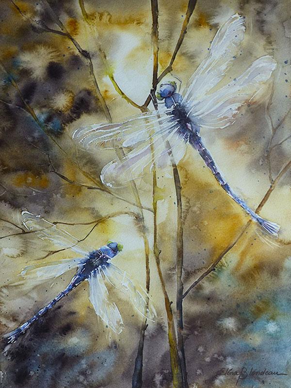 Les libellules 40 x 30